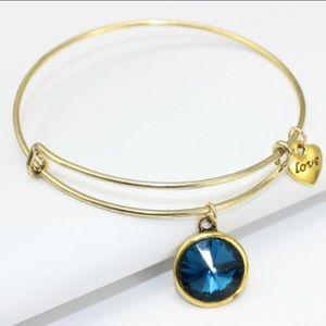 Jewelry - New DECEMBER Birthstone Bracelet